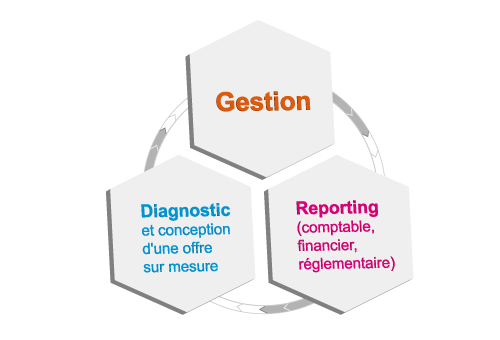 Cycle du mandat de gestion
